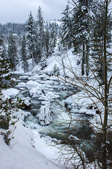Snowy Truckee (Middle aged Nikonite) Tags: snow river snowy cold winter trees forest water nikon d7200 cisco grover california outdoor landscape