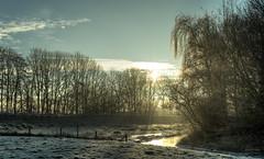 Ice cold liquid light. (Alex-de-Haas) Tags: 50mm d5 dutch hdr january nederland nederlands netherlands nikkor nikkor50mm nikon nikond5 noordholland thenetherlands warmenhuizen westfrieseomringdijk bevroren cityofwarmenhuizen cold daglicht daylight frozen gevroren handheld highdynamicrange icy januari koud landscape landschap licht light overdag polder polderlandschap sun sunray sunrays sunbeams sunny sunrise winter zon zonnestralen zonnig zonsopgang