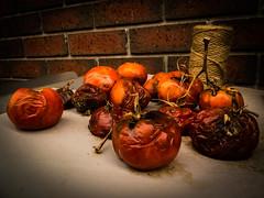 Rotten tomato (Thor888) Tags: tomato fuji lobster marketplace rotten x10