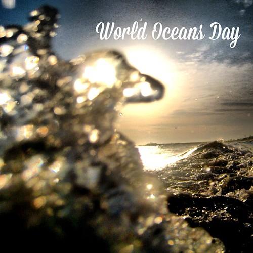 It's #WorldOceansDay! #saveourseas #saveouroceans