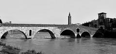 14 Verona - Ponte Pietra (saragrandi81) Tags: city verona reportage citt nikond5100