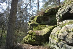 Isterberg-Wald (GrafschaftBentheim) Tags: germany deutschland familie wald wandern felsen niedersachsen kletterfelsen isterberg schüttorf grafschaftbentheim
