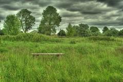 the bench (oplumb) Tags: sky green nature bench photography pentax dramatic hdr feild langford k10d pentaxk10d photomatix41