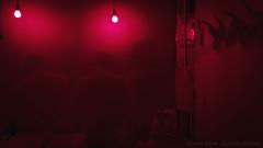 Camera oscura #2 (m@ve81) Tags: red foto rosso sviluppo cameraoscura cameraottica
