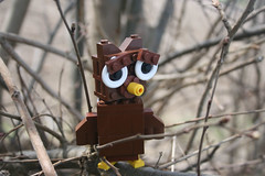 Lego Owl (Random Danish Guy) Tags: animal woods lego forrest owl expressioneyesanimals