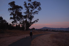 Early winter morning, looking to Mt Tennant, Gordon, Tuggeranong, Canberra ACT Australia (John Panneman Photography) Tags: winter d50 nikon pug australia gordon canberra act tuggeranong mttennant