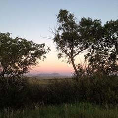 Moon Rise over the Sweet Grass Hills (Damalo Photo) Tags: trees moon montana purple hills sweetgrass toolecounty
