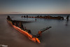 Revealed (Dave Brightwell) Tags: sunset canon timber shipwreck northsea wreck northeast southshields tynemouth remains hitech redsnapper 5dmk2 bwnd davebrightwell