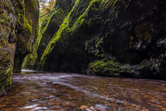 Oneonta Gorge (absencesix) Tags: longexposure travel autumn plants green fall nature wet colors oregon river moss october rocks seasons unitedstates canyon noflash northamerica gorge portfolio locations locale 17mm cascadelocks historiccolumbiariverhighway manualmode oneontagorge iso50 2013 500px geo:state=oregon exif:iso_speed=50 1424mmf28 objectsthings hasmetastyletag hascameratype naturallocale adjectivesfeelingdescription haslenstype exif:focal_length=17mm camera:make=nikoncorporation afsnikkor1424mmf28g selfrating5stars 16secatf11 exif:make=nikoncorporation geo:countrys=unitedstates exif:lens=140240mmf28 exif:aperture=ƒ11 subjectdistanceunknown nikond800e exif:model=nikond800e camera:model=nikond800e 2013travel geo:city=cascadelocks october132013 portlandcolumbiariverhighwaylostlakephototripwithnick1011201310132013 geo:lon=12207406333333 geo:lat=45587785 45°3516n122°427w cascadelocksoregonunitedstates