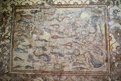 Mosaico de los Peces (Fernando Two Two) Tags: museum museu roman antique mosaic mosaico romano latin museo archeology romanempire tarragona mosaik tarraco arqueologia arqueologa rom antigedad imperioromano arqueolgic mnat imperirom
