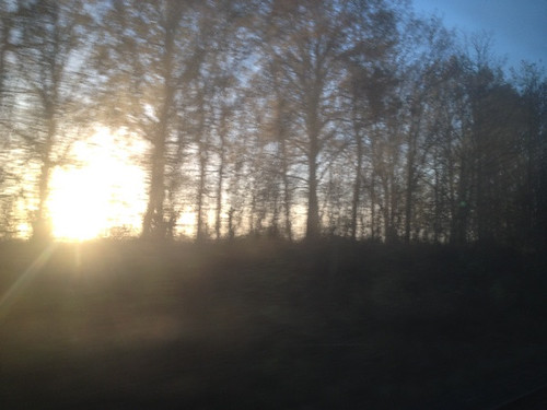 Original image link: http://ift.tt/19UEHFJ Brilliant views from the train between Ringsted and Næstved this morning. Low sun through fog.