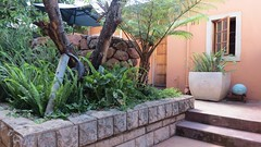 Deluxe Suite, Dinkwe Lodge & Guest House, Pretoria