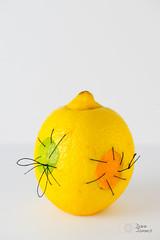 Frankenfruit (@Dave) Tags: orange man macro thread fruit dave lemon flickr little digging sewing small needle lime 2014 nikkon pickaxe nikor 2014inphotos flickruploads2014 jamesd600