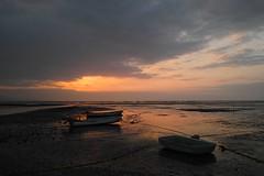 DP1M0070 (Keishi Etoh rough-and-ready photoglaph) Tags: sunset sigma kumamoto foveon   dp1 arao ariakebay  dp1m dp1merrill sigmadp1merrill  araotidalflat