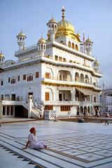 Enjoying the Morning at the Golden Temple (the shot of life) Tags: india asia asien religion sikh punjab indien amritsar goldentemple goldenertempel akaltakht strasenszenestreetscene morgenstimmungdawn