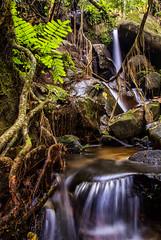 TROPIKA (Abamjiwa Al-Hadi) Tags: motion green art nature rock stone forest landscape waterfall nikon rainforest rocks jungle malaysia slowshutter tropical v1 melayu travelasia travelmalaysia visitmalaysia perlancongan malaysianationalpark abamjiwaalhadi nikonv1 tourismemalaysia hulupaip