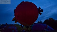 Ominous Bird (errolgc) Tags: newzealand bird balloon hamilton universityofwaikato balloonsoverwaikato2014 cameronsphere105n333abangry nightglow2014