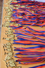 "Award Medals • <a style=""font-size:0.8em;"" href=""https://www.flickr.com/photos/121802672@N04/13500553073/"" target=""_blank"">View on Flickr</a>"