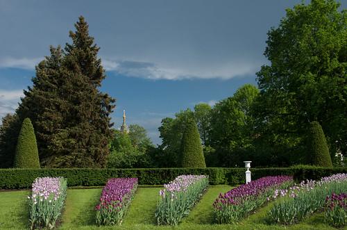 Flower beds in Petrhof /  ©  Still ePsiLoN