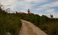 Path to the Lighthouse (grannie annie taggs) Tags: path lighthouse barrenjoey sydney coast