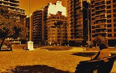 Mediodía en la plaza (ojoadicto) Tags: plaza edificios buildings buenosaires banco bench