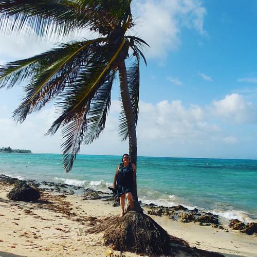 Corría viento, por eso la forma de la palmera es así #DonOsoTrip #DonOsoResidence #paraiso #beach #eu #me #我 #나