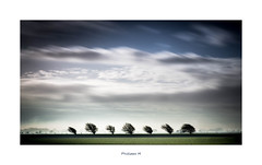 PhM - Ligne d'arbres (2) (Philippe Em) Tags: 80 aaa1geographie aab2nature arbre baiedesomme campagne ciel colors couleurs countryside france horizontal lamollièredeterre paysage plain plaine somme