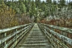 Old Wooden Bridge (Chatham Sound) Tags: britishcolumbia canada 124 victoria