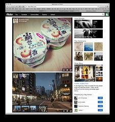 Flickr (taromatsumura) Tags: flickr capture