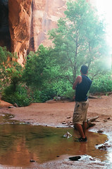 Negro Bill Gary ( RAINYNEPTUNUS ) Tags: bridge summer tree film pool analog 35mm utah bill sand sandstone desert negro canyon oasis moab redrock ricoh xr2s analogphotgraphy
