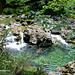 Río Dobra: Olla San Vicente