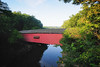 Covered bridge (charlesgyoung) Tags: morning day indiana clear coveredbridge d3 turkeyrunstatepark nikonfx