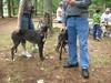 GreyhoundPlanetDay2008054
