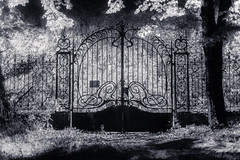 Gates (Clement's Photography) Tags: show new old city trip travel blue friends light red vacation portrait sky people urban blackandwhite bw holiday black paris france flower color green art fall love film me nature girl fashion museum architecture night clouds cat vintage square de fun photography la photo model nikon europe raw day photos live du le chteau manoir roche roi iphone abandonn instagramapp flickrandroidapp:filter=none