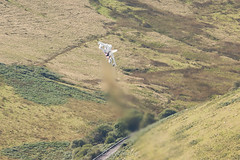 Powering Out (Dan Kemsley) Tags: wales canon photography mod force image aviation air ministry low jet royal aeroplane crew valley after british sortie tornado bluebell defence 100400mm raf aero burners lowlevel sqn panavia gr4 bwlch machloop lowfly 50d lfa7