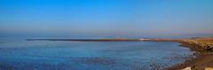 20130118_winton_73_pano (caligula1995) Tags: panorama sanfranciscobay haywardregionalshoreline haywardslanding
