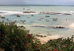 Praia da Pipa (Ricardo_ Lima) Tags: brazil brasil coth praiadapipariograndedonortelazerleisureturismotourismtraveldestinationsguidefifa2014vacacionesfériasviagens