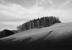 (Juliška) Tags: winter shadow blackandwhite nature germany landscape sachsen nomansland erzgebirge treelove canoneos50d