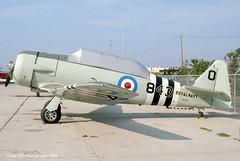 N7211C - 1942 build North American AT-6D Texan, still active but now in US Navy Miramar markings (egcc) Tags: santabarbara harvard municipal texan royalnavy sba northamerican 843 at6d ksba 84912 8816923 n7211c 4285142