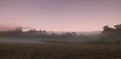 Point Reyes (markvcr) Tags: sanfrancisco california morning mist nature field fog cool calm pointreyes ptreyes