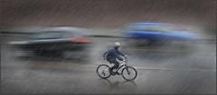 Biker Two Cars Rain (Roger Simon 2017) Tags: cars car weather bicycle speed bicycles rainy raindrops raining rainydays platinumheartaward bestcapturesaoi elitegalleryaoi mygearandme mygearandmepremium mygearandmebronze mygearandmesilver mygearandmegold
