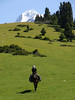tien shan mountains kyrgyzstan (lercherl) Tags: horse trekking de cheval à kyrgyzstan cavallo horseback passeios kirghizistan kirgistan kirgisien прогулки randonnées 트레킹 قيرغيزستان kirgisia quirguistão киргизия кыргызстан 키르기스스탄 pferdetrekking 마상 ratsastusvaellukset конные 骑马徒步吉 キルギストレッキング乗馬