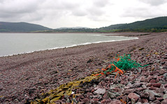 Plastic debris on the coastline near Porlock (Snemann) Tags: autumn sea england nature closeup trash october colours shorelines litter beaches coastline k5 plastics coastlines environmentalissues oceantrash beachlitter marinedebris pentaxda21mmf32allimited smcpda21mmf32al marinelitter plasticlitter justpentax marintavfall strandsppel