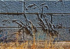 1 Lazy Painter (Mertonian) Tags: white brick texture grass wall canon 1 weeds mood blues powershot lazy painter mertonian canonpowershotsx60hs robertcowlishaw sx60hs monkofthewestdesertcom 1lazypainter