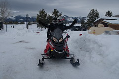 2017-00214 (kjhbirdman) Tags: activities businesspeople colorado eidt people places snowmobiling steamboatsprings unitedstates vascularsurgerycolleagues