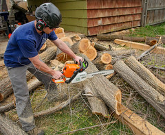000ElmTreeVitality (Symic) Tags: tree vitality treevitality nicko nick lund chain saw chainsaw cut wood work land landscape helmet safety navy blue dust sawdust boots man manly pile log logs elm spring trim remove new sharp fresh stihl farm boss orange glass sun sunglasses green grass job worksite entrepreneur self employed