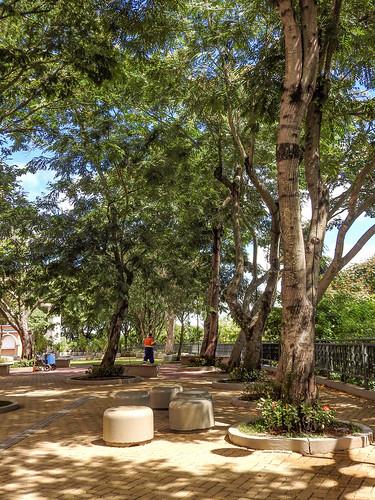 Aparecida - Jardim