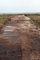 Peat (Styggiti) Tags: uk travel vacation june scotland europe peat islay whisky bog distillery laphroaig 2013