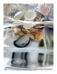 refraction (Carolyn Saxby) Tags: shells reflection water glass bubbles refraction jar thejarproject carolynsaxby