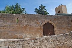 ZAMORA (SPAIN) (ABUELA PINOCHO ) Tags: espaa spain puerta ciudad muralla zamora